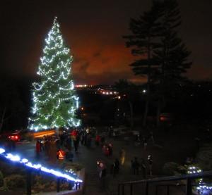 2015 Christmas Tree Lighting and Blessing